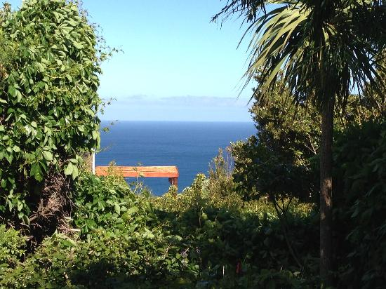 Cape Rose Cottage: View from our terasse