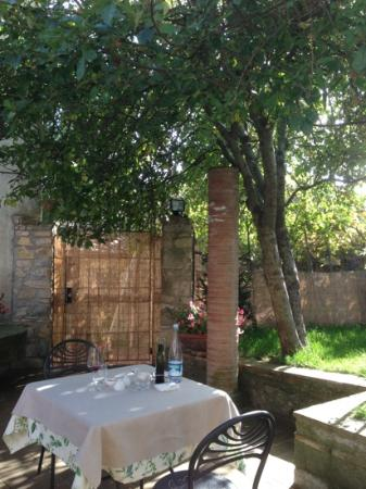 Tuscan Wine Tours with Angie: restaurant we had launch
