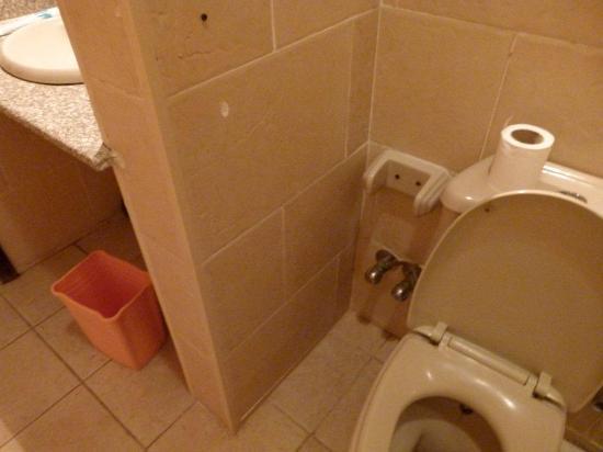 Aida Hotel Sharm El Sheikh El Hadaba: toilette every thing are damged