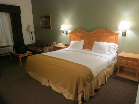 Holiday Inn Express & Suites Mt Rushmore / Keystone: Room