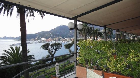 هوتل كونتننتال: terrasse 