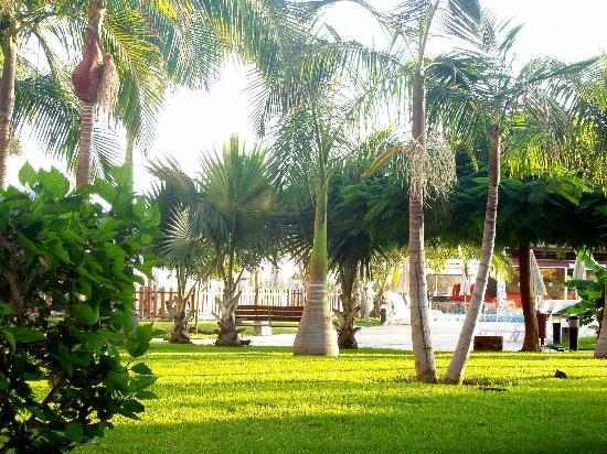 H10 Playa Meloneras Palace: gardens