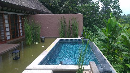Orange County, Coorg: The pool in the villa