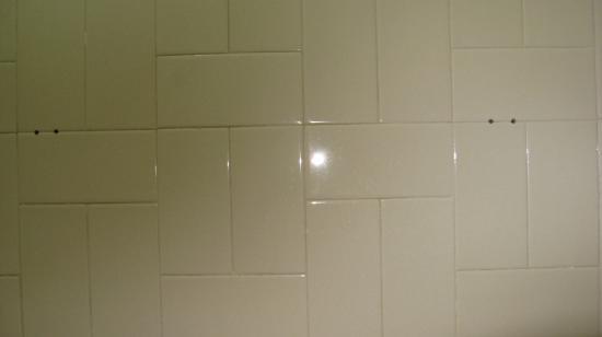 Regal Hotel: T1: Missing towel bar