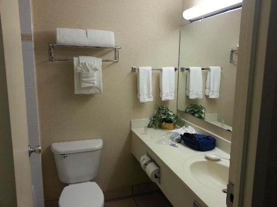 Best Western Plus Seattle/Federal Way: Bath in Room 119