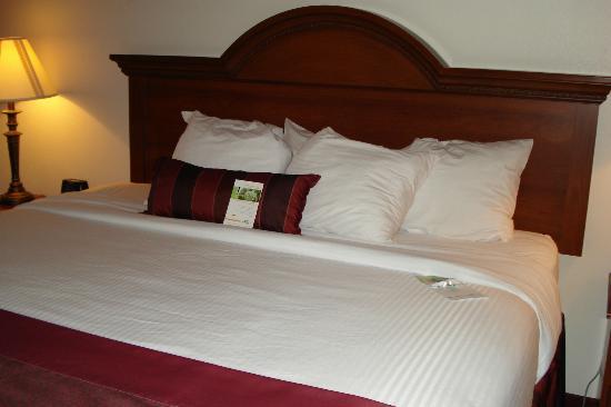 Wingate by Wyndham Vienna Parkersburg: Pretty bed