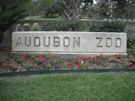 Audubon Zoo: Location at the entrance to the park, where you pick up the shuttle.