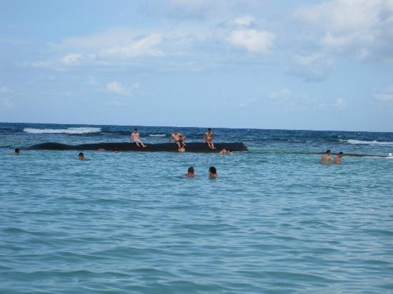 Grand Bahia Principe Coba: Big sand bag to block the waves.