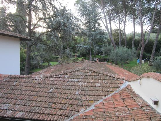 Fiorenza B&B : Garden from our window