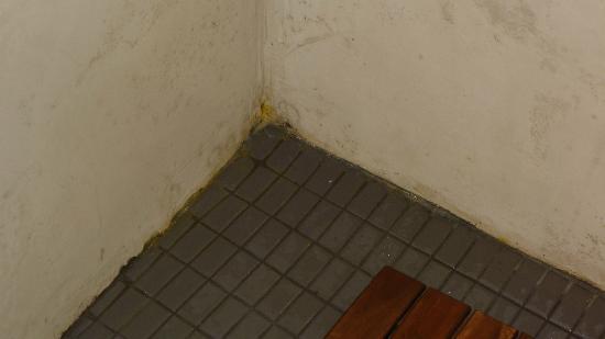 Petit Hotel de Riu : manchas