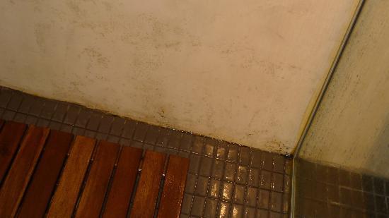 Petit Hotel de Riu: manchas