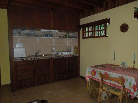 Villa Escazu: kitchen in 1 BR apt