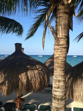 "Occidental Cozumel: view from the ""activity pool"""