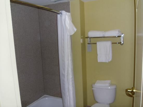 Homewood Suites Valley Forge: Bathroom