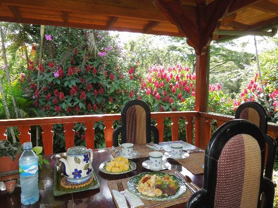 Villa Escazu: breakfast is always a treat