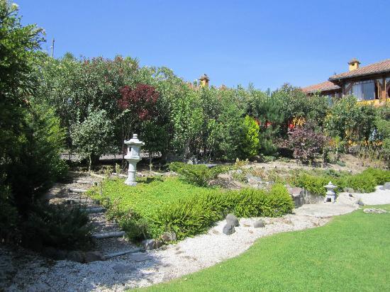 B&B Tumbaco: Garden