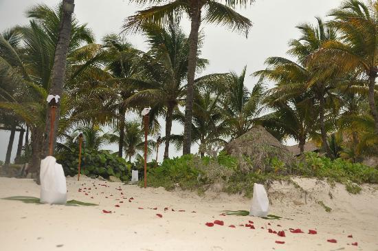 Matrimonio Spiaggia Decorazioni : Decorazioni spiaggia per matrimonio picture of hotel catalonia