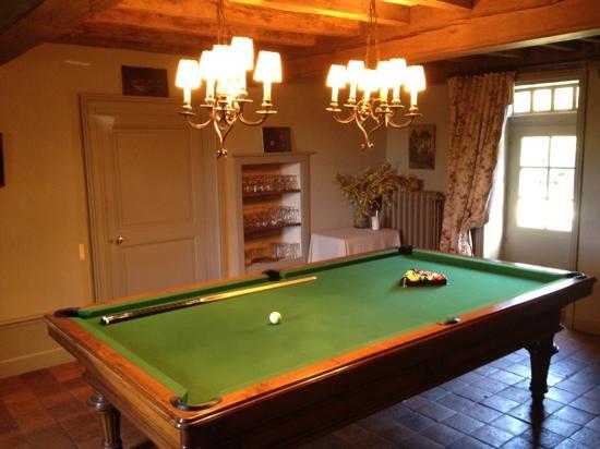 Hugo a la Campagne : billiard room