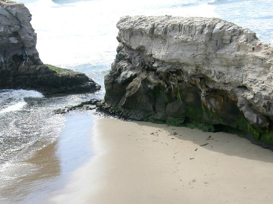 Natural Bridges State Beach: Tempting pleasures