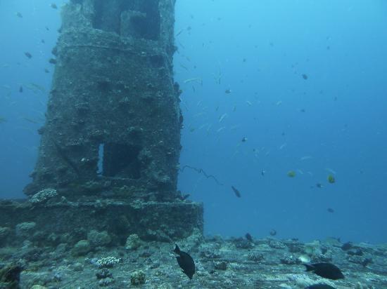 Dive Time: Fantastic diving