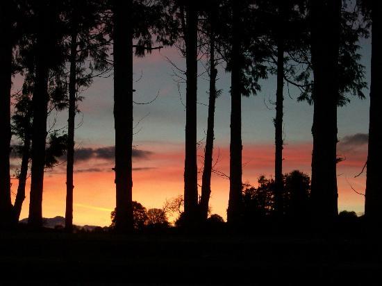 Bryndu Farm: AUTUMN NIGHT SKY