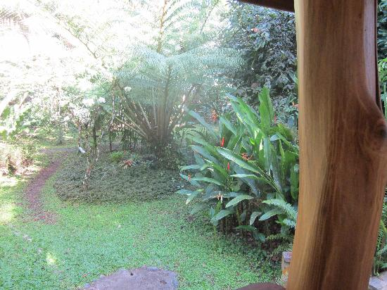 La Finca Chica: view from porch cabin 4