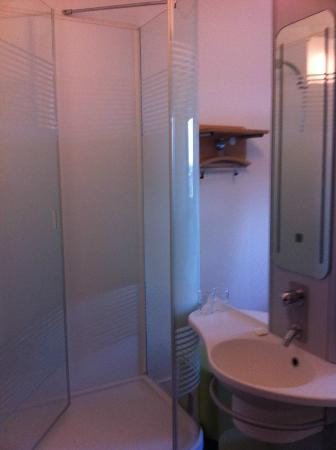 Ibis Budget Köln Messe: Shower and sink integrated into bedroom