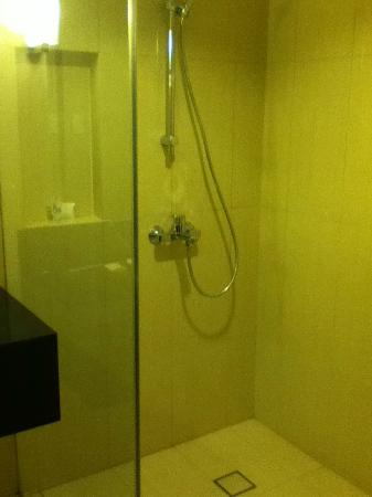 Luxent Hotel: shower stall