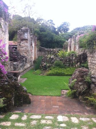 Hotel Cirilo: Garden