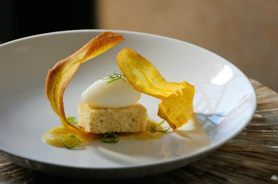 Bardessono Lucy Restaurant Reviews