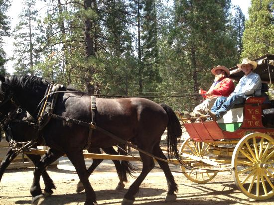 Pioneer Yosemite History Center: Take a buggy ride, nice people and horses