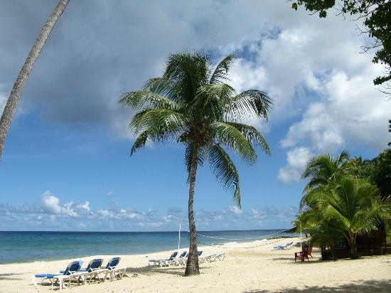 Renaissance St. Croix Carambola Beach Resort & Spa: Carambola Beach