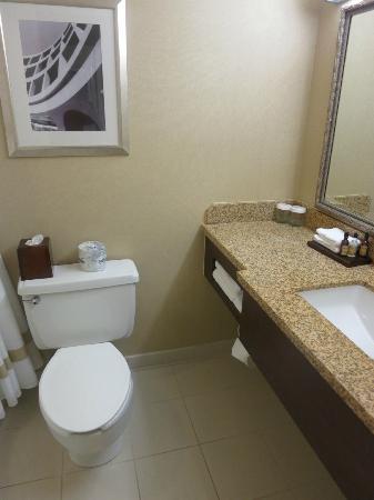 Salt Lake Marriott Downtown at City Creek: Bathroom