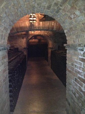 Castello di Amorosa: Cellar