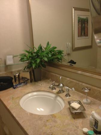 The Ritz-Carlton, Buckhead: bathroom