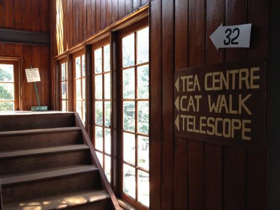Ceylon tea museum - Kandy