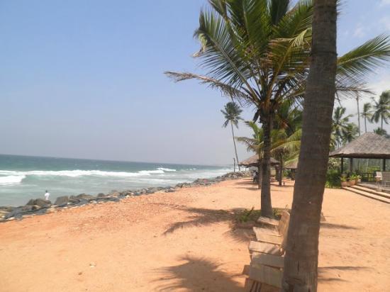 Taj Green Cove Resort Spa Kovalam Private Beach