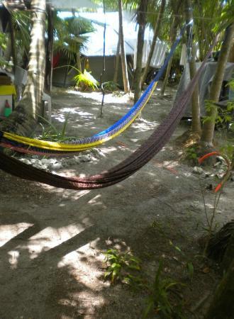 Cenote Encantado : Hammocks outside tends