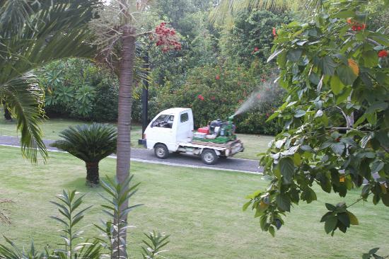 Club Med Punta Cana: Pesticide spray from the balcony