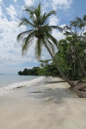 Popa Paradise Beach Resort: Yet another Popa beach!