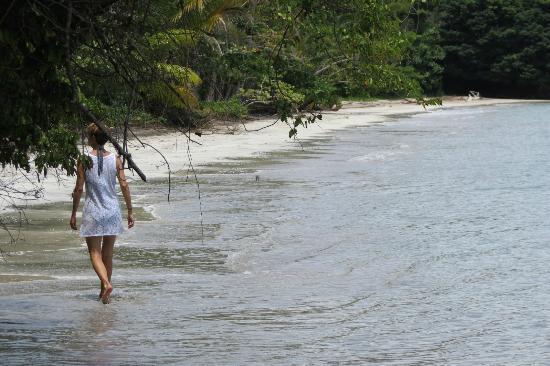 Popa Paradise Beach Resort : Another Popa beach