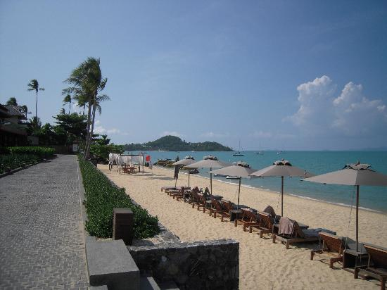 Hansar Samui Resort: The beach