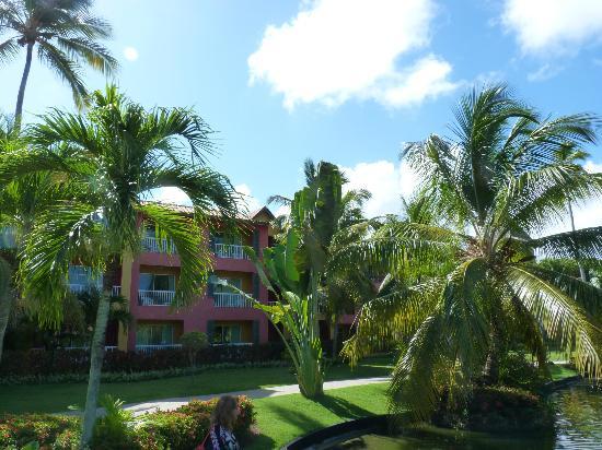 Caribe Club Princess Beach Resort & Spa: Jardines