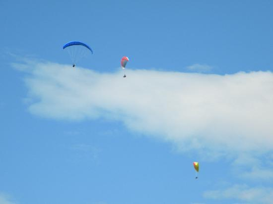 Hotel Derby: People paragliding seen from my room