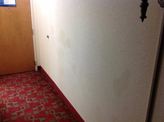 Hampton Inn Canton: Mismatched paint touch up