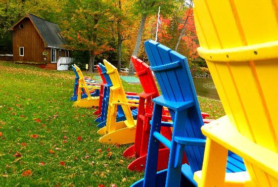 Shamrock Lodge: Colourful chairs