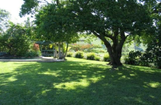 Hillcrest Mountain View Retreat Shade Tree By The Pool