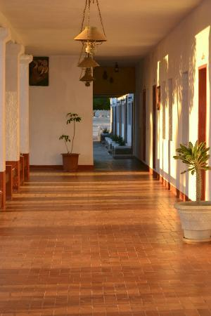 Las Palmas Hotel: Nice and clean