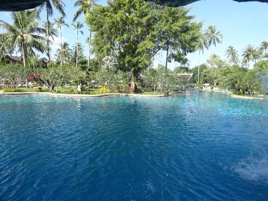 Duangjitt Resort & Spa: Pool