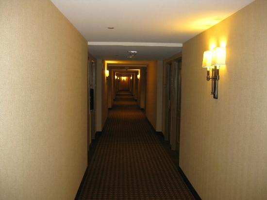 Sheraton Houston West: Hallway